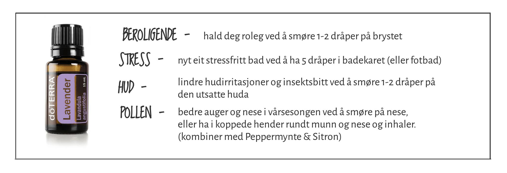 Lavendel - lp.faktaboks
